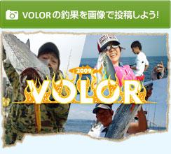 volor(バラー)の釣果を画像で投稿しよう!